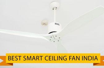 Best Smart Ceiling Fan India