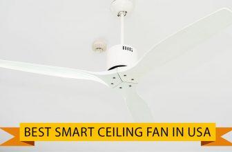 Best Smart Ceiling Fan in USA 2021